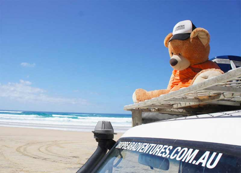 Blog The Best Job In Australia Maybe Even The World Fraser Island Tour Guide