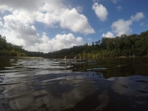 Swimming and snorkelling In Lake Allom Famous For Turtles